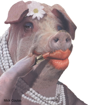 Muftis' proposals are just like this i.e. Pig with Lipstick